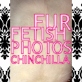 PHOTOS of MY beautiful rare WHITE (Albino) PLUSHY CHINCHILLA FUR (THE softest FUR you can buy!)