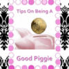 Tips on being a GOOD PIGGY (Instructional PAYPIG TRAINING Video)